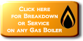 Click here to Contact Us for Breakdown or Service for any Boiler